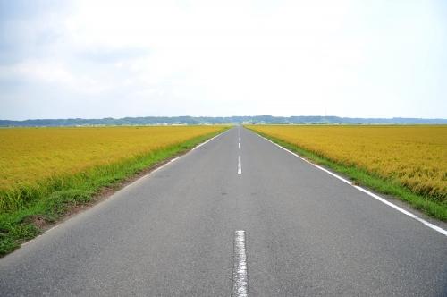 旭市・秋の田園風景/千葉県公式観光情報サイト-まるごとe ...